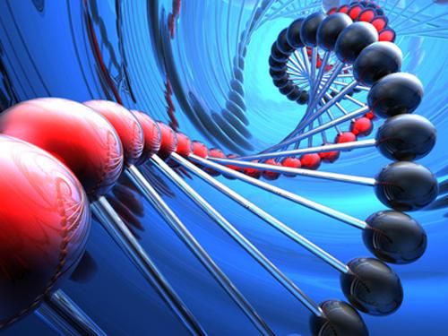 genes, información genética, genoma humano,