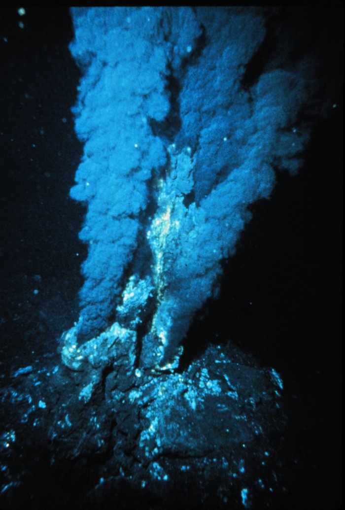 respirador_hidrotermal
