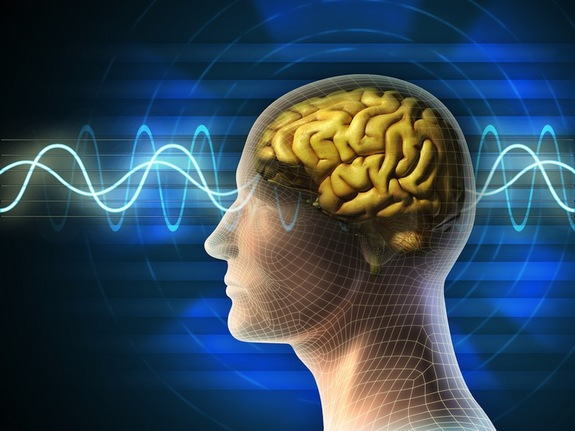 brain-connectivity-130802
